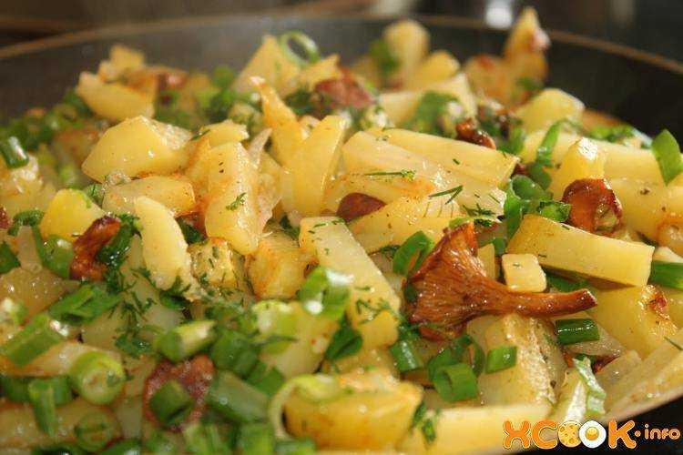 Жареный картофель с лисичками рецепт с фото